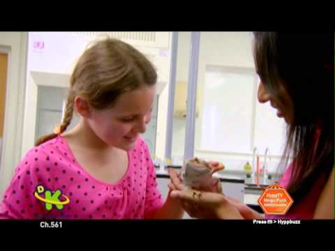 Pet School Promo - unifi TV Discovery Kids (Ch 561)