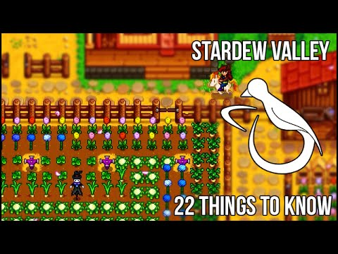 22 Things I Wish I'd Known Sooner in Stardew Valley (enable annotations!)