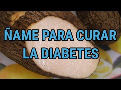 Ñame-silvestre-para-la-diabetes