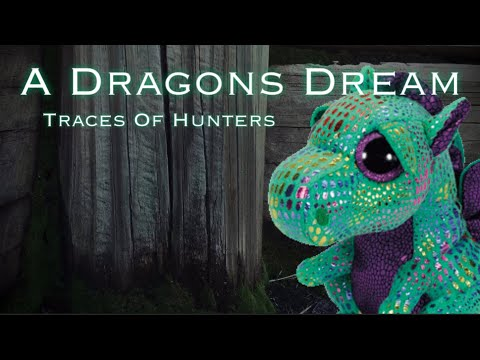 A Dragons Dream - P.1 (Traces Of Hunters) ~ Codys Beanie Boos