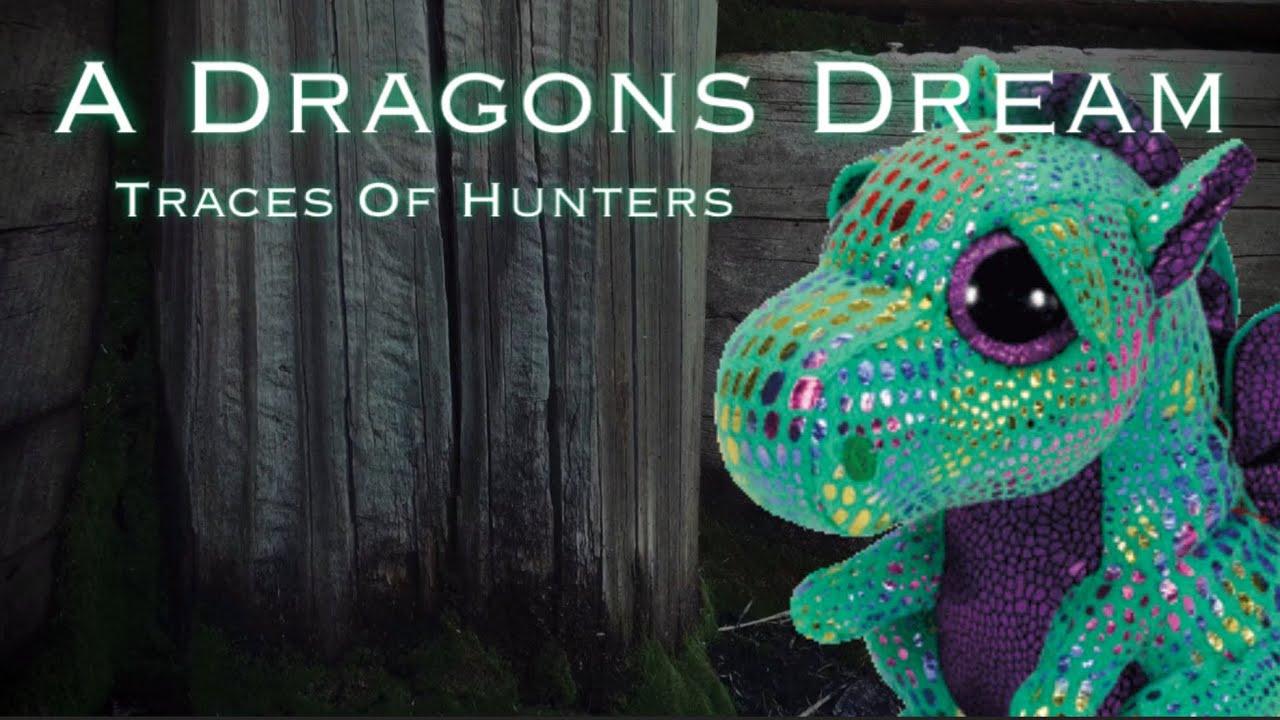 86d882e0377 A Dragons Dream - Part 1 (Traces of Hunters) ~ Codys Beanie Boos ...