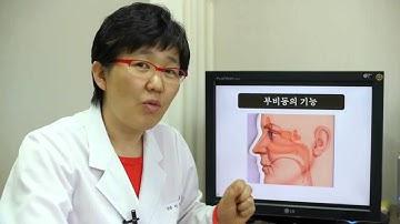 [축농증학교] 안구건조증, 눈이 아닌 코를 치료해야 한다