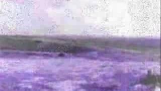 Nina Hagen- Du hast den Farbfilm vergessen