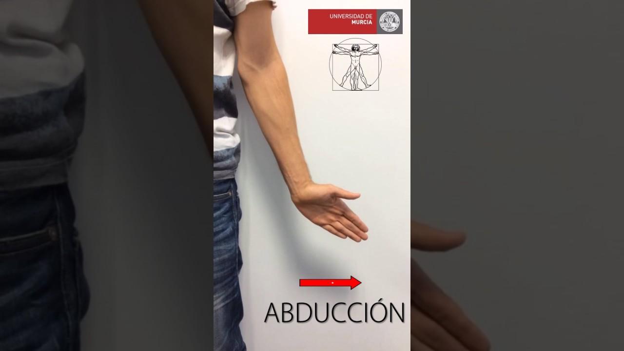 Abducción Adducción mano - YouTube