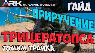 Приручение Трицератопса (Трайка)   Triceratops (Trike) ARK:Survival Evolved