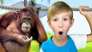 Let's Go To The Zoo | Zoo Song | Tim and Essy Nursery Rhymes and Kids Songs