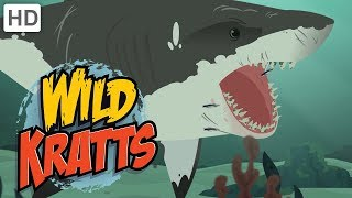 Wild Kratts - Swimming with the Sharks 🦈