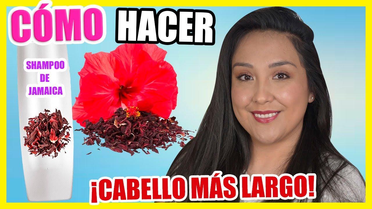 Cómo hacer SHAMPOO de JAMAICA (Flor de Hibisco)   CABELLO más LARGO   Nadia Elias