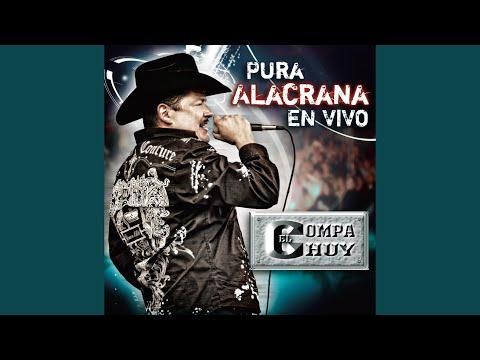 El Corrido Del Katch (Live)