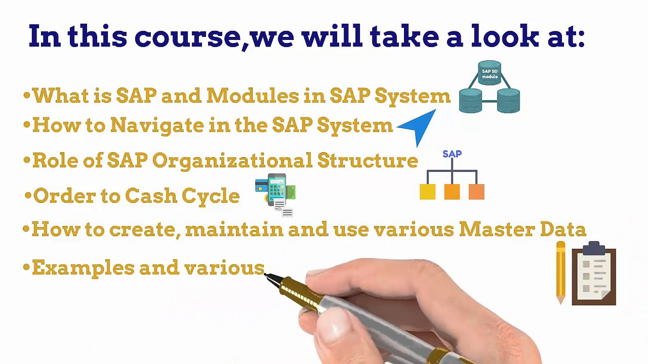 SAP Sales & Distribution (SD) Training (Video 1) What is covered in this course?