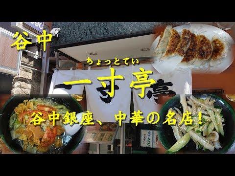 """谷中【一寸亭】の冷やしタンメンとミミガー Cold Tanmen and Mimiga""""pig ears""""of CHOTTOTEI in Yanaka.【飯動画】"""