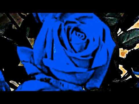 ♥ Ƹ̵̡Ӝ̵̨̄Ʒ ♥ BLUE BACH ~ FRANCK POURCEL