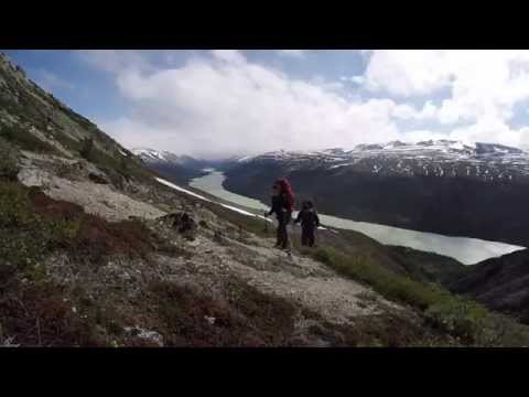 Six day trek in the Coast Mountains, Yukon