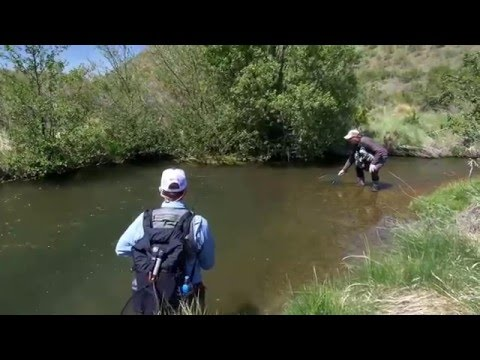 Flyfishing small waters in New Zealand - Directors cut..