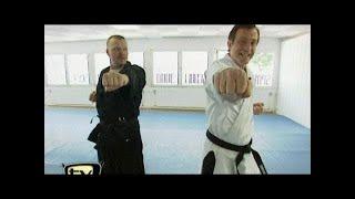 Raab in Gefahr: Karate Teil 1 - TV total