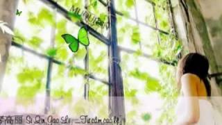 Phạm Lỗi - 犯错 ( Fan cuo )_斯琴高丽 Si Qin Gao Li  Tư Cầm Cao Lệ