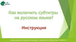 Краткая инструкция как включить субтитры на русском.