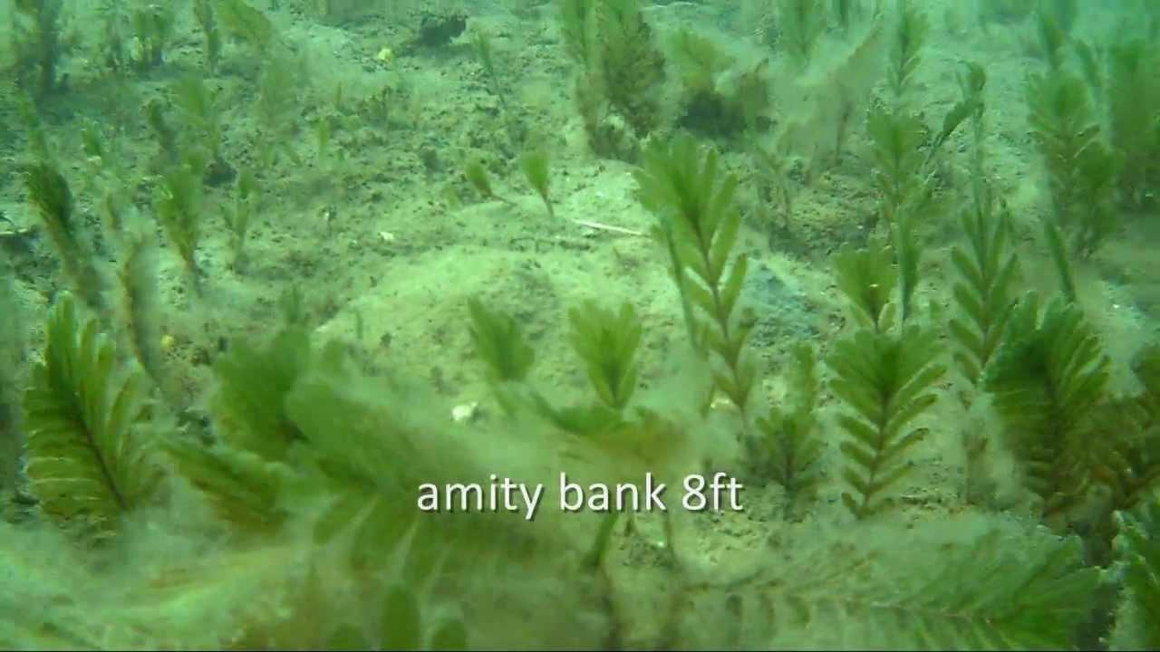 QPIX underwater control test HD - YouTube