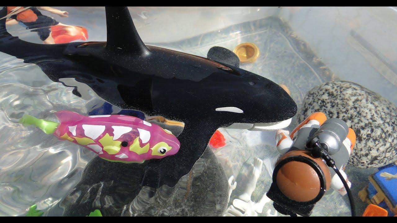 Aquarium robo fish tropical robo fish test youtube for Robo fish tank
