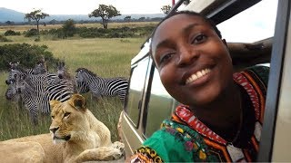 Mikumi National Park ||Safari and Luxury tented Camp