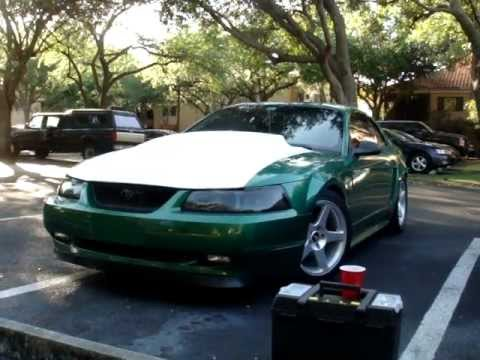 2000 Mustang Gt Electric Green Cowl Hood Youtube