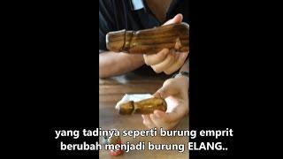 Video Tutorial Cara Pijat Batang Lelaki dengan Minyak Lintah Bali Utara