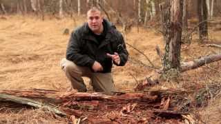 How to Start a Fire in Rain or Wet Conditions Part 1