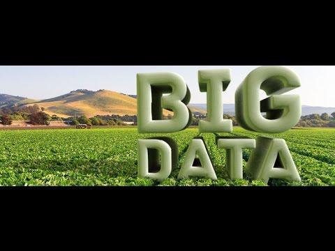 Precision farming and big data