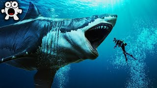 top 20 largest sea creatures that ever existed