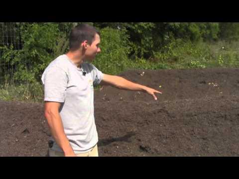 Hugelkultur Project Part 2 Planting the Polyculture
