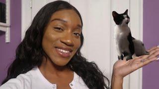 MY FIRST KITTEN   Vlog