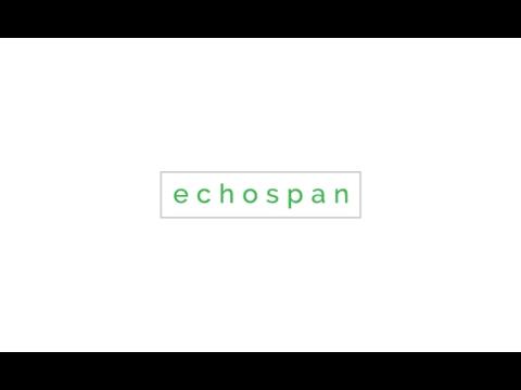 EchoSpan 360 Feedback Demo