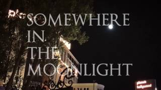 Somewhere In the Moonlight | Sylvia Bennett