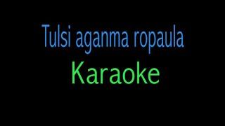 Tulsi Aaganma Ropaula karaoke with english lyrics | Bato muniko phool