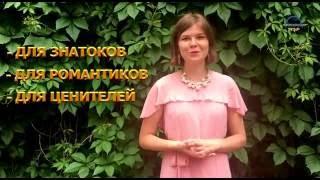 видео Самые дешевые туры выходного дня из Москвы без визы