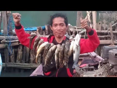 Mancing Kadal Gurun Di Laut Wedung Demak - YouTube