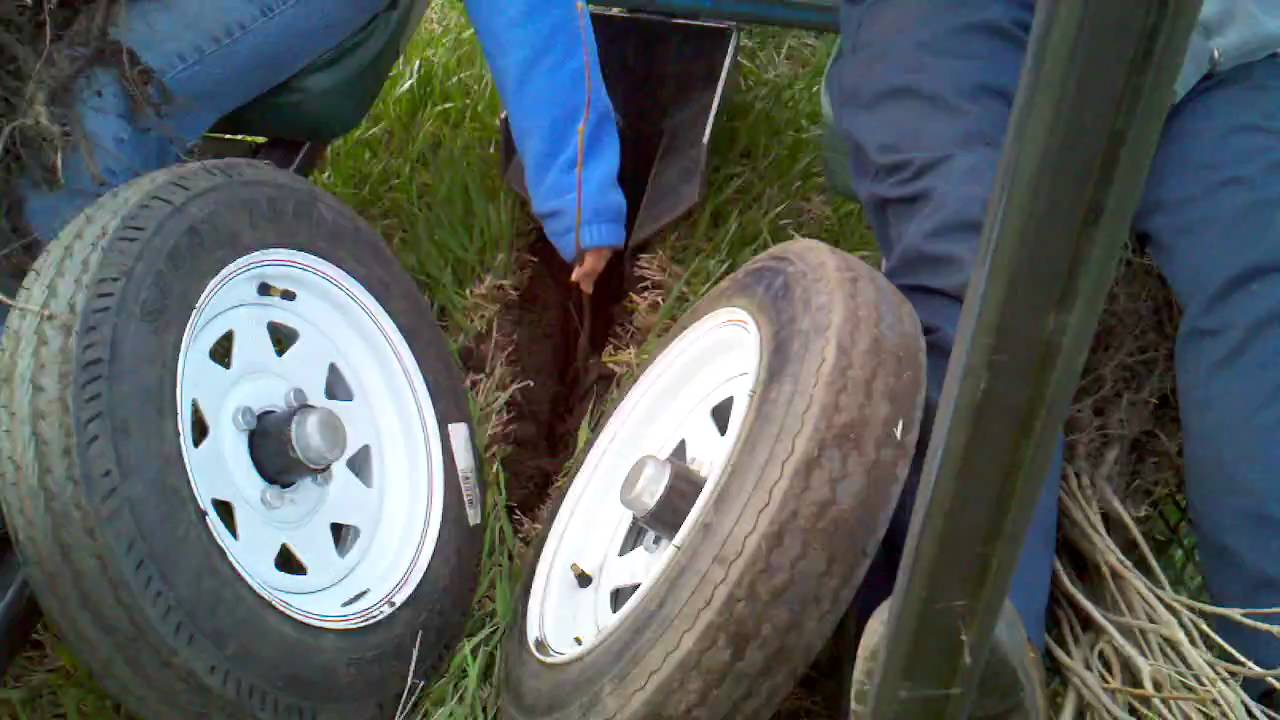 tree planting - YouTube
