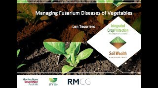 Fusarium wilt management in vegetables with Dr Len Tesoriero