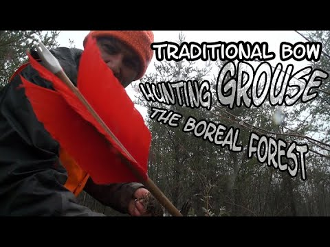 Traditional Bow Hunt Grouse Ep-3 The Boreal Forest