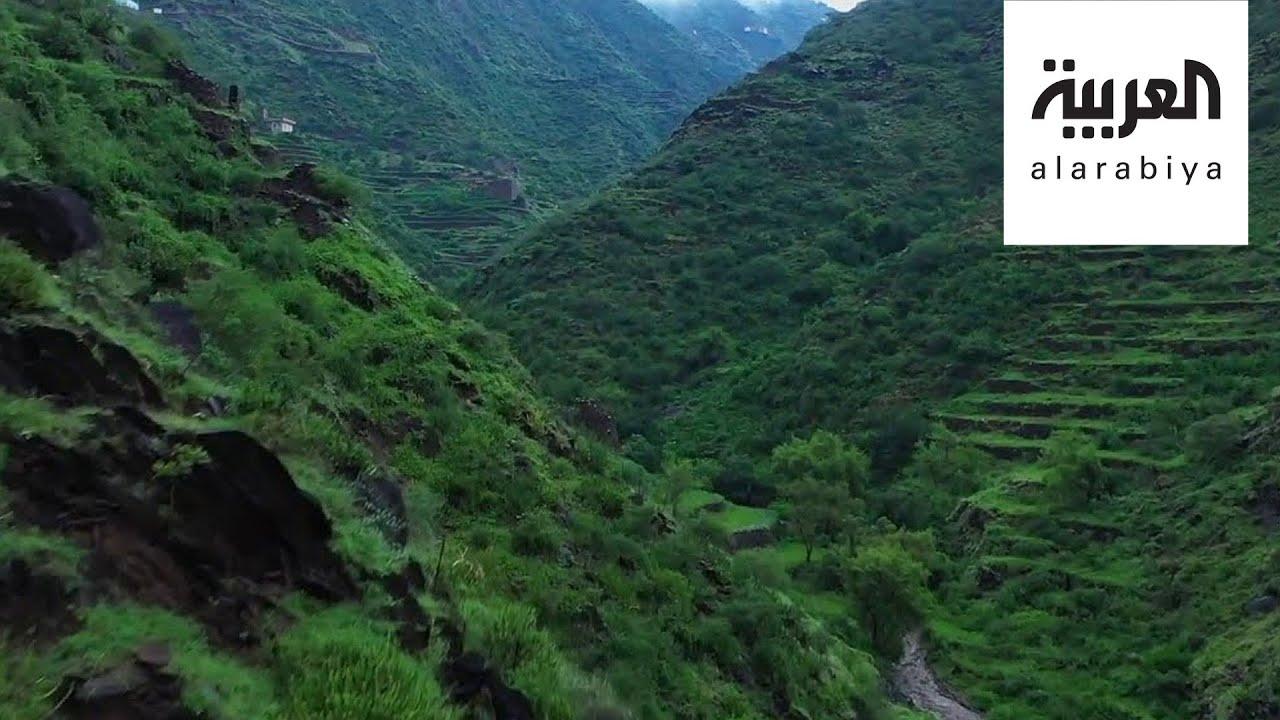 شاهد هذه المناظر الخلابة من جبال خاشر في جازان جنوب السعودية Youtube