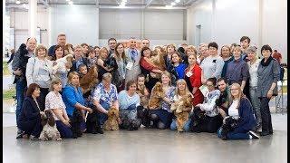2019 Интернациональная выставка собак CACIB – FCI «Мемориал А.П.Мазовера»