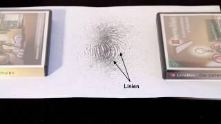 Ausrichtung von Eisenspänen in einem Magnetfeld