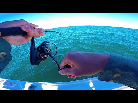Insane SALTWATER Fishing In The Keys! -- Florida Charter Fishing