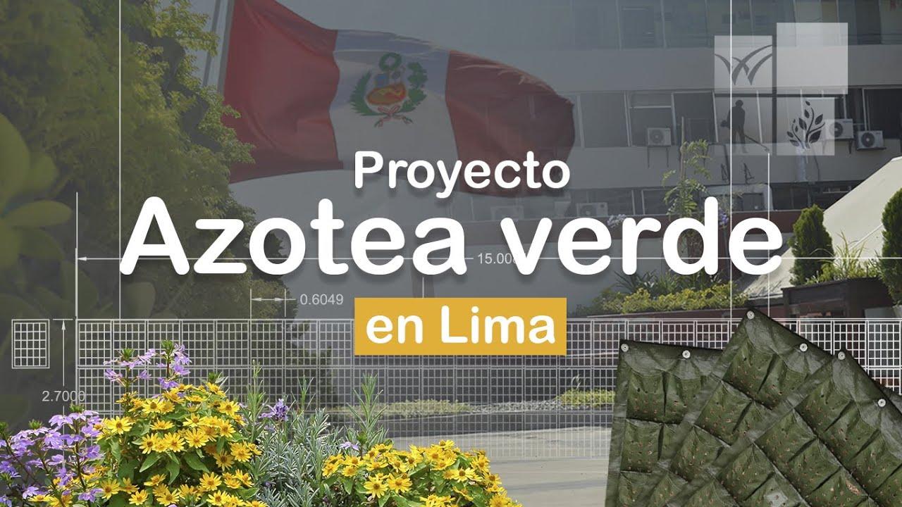 Instalación paso a paso de una AZOTEA VERDE en LIMA