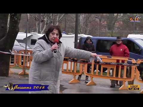 expo de flassans du leonberg 2018 1er partie