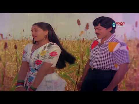 Kondaveeti Raja Movie Songs - Naa Koka Bagunda - Chiranjeevi Radha VijayaShanthi