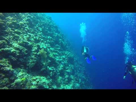 Mergulho no Palau - New Drop Off