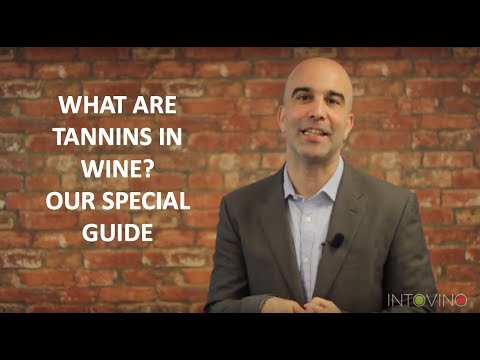 wine article What Are Tannins in Wine Our Special Guide