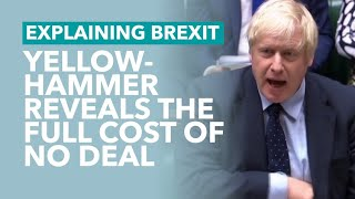What The Yellowhammer Report Tells Us About No Deal - Brexit Explained