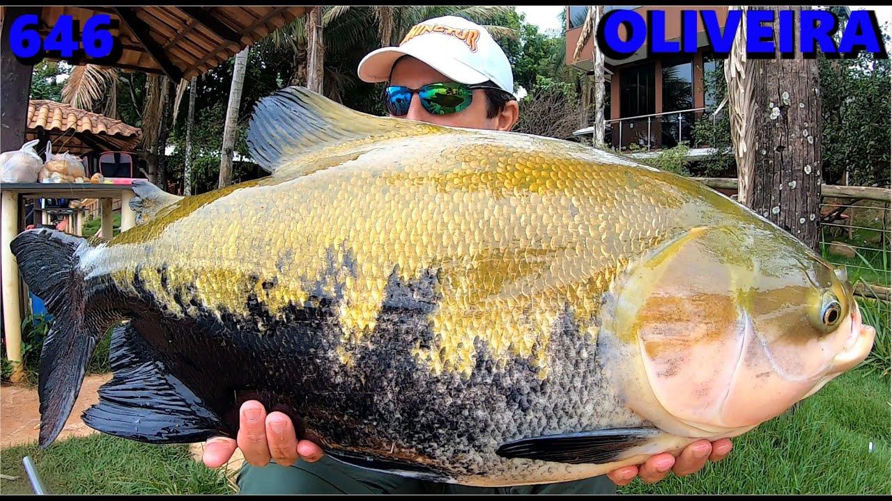 Muita chuva e frio em nossa pescaria no Oliveira - Programa Fishingtur na TV 646